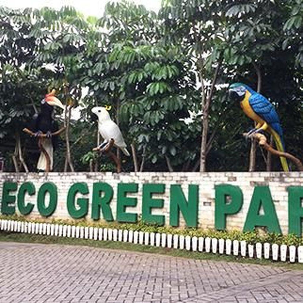 Eco Green Park, Wisata yang Cocok untuk Belajar tentang Alam