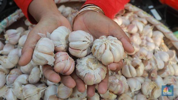 Izin Impor Bawang Putih Tambahan 125 Ribu Ton Segera Terbit