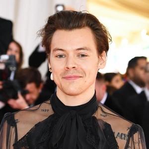 Harry Styles Punya Kulkas Besar Khusus Simpan Baju, Diawasi CCTV