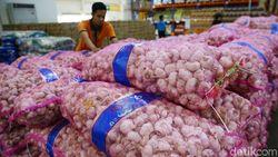 Konsumen Rugi Rp 2,6 T Gara-gara Harga Bawang Putih Melonjak