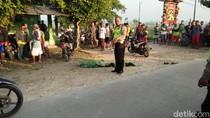 2 Motor Adu Muka di Ngawi, Dua Orang Tewas