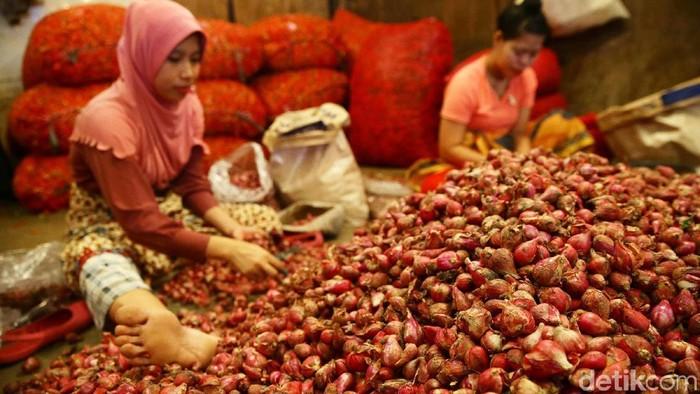 Pekerja tengah mengangkat karung yang berisikan bawang merah di Pasar Induk Kramat Jati, Jakarta, Selasa (7/6/2019). Berdasarkan pantauan dari Pusat Informasi Harga Pangan Strategis (PIHPS) Nasional yang dikelola Bank Indonesia (BI) dan pemerintah, komoditas bawang putih, bawang merah, cabai rawit merah, dan cabai rawit hijau terus merangkak naik dalam sepekan terakhir.