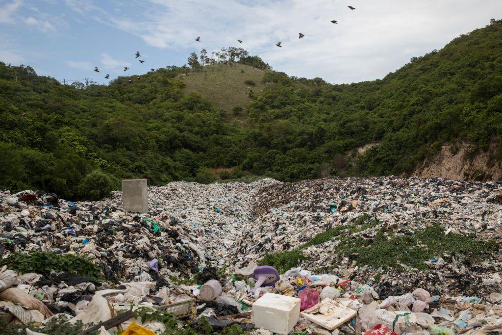 Di darat, laut dan udara, kerusakan yang dilakukan manusia pada Bumi semakin terlihat. Laporan terbaru dari Perserikatan Bangsa-bangsa (PBB) memberi gambaran mengerikan, sejuta spesies binatang dan tumbuhan terancam punah. Foto: Getty Images