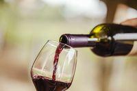 Jika Rutin Dikonsumsi Red Wine, Kopi Hingga Buah Bisa Cegah Kanker Payudara