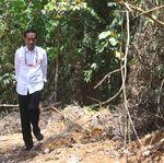 Jokowi Blusukan Cari Calon Ibu Kota Baru di Kalimantan, Ini Hasilnya