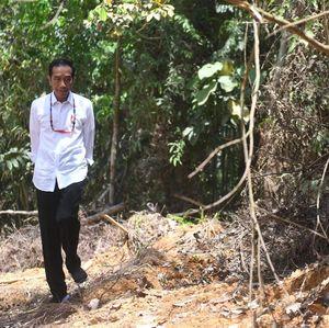 Pekan Depan, Jokowi Menginap di Calon Ibu Kota Baru