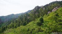 Rangkaian Pegunungan Taebaek di Sokcho (Afif Farhan/detikTravel)