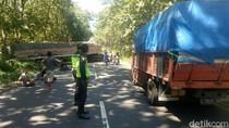 Tronton Melintang, Jalur Pantura Baluran Situbondo Sempat Terganggu