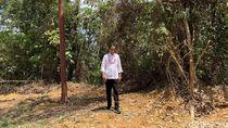 Tinjau Kelaikan Kalteng Jadi Ibu Kota RI, Jokowi: Nemu Feeling
