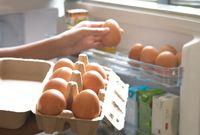 Pemilik Toko Ini Berikan Telur Gratis Sebagai Pengganti Kotoran Anjing