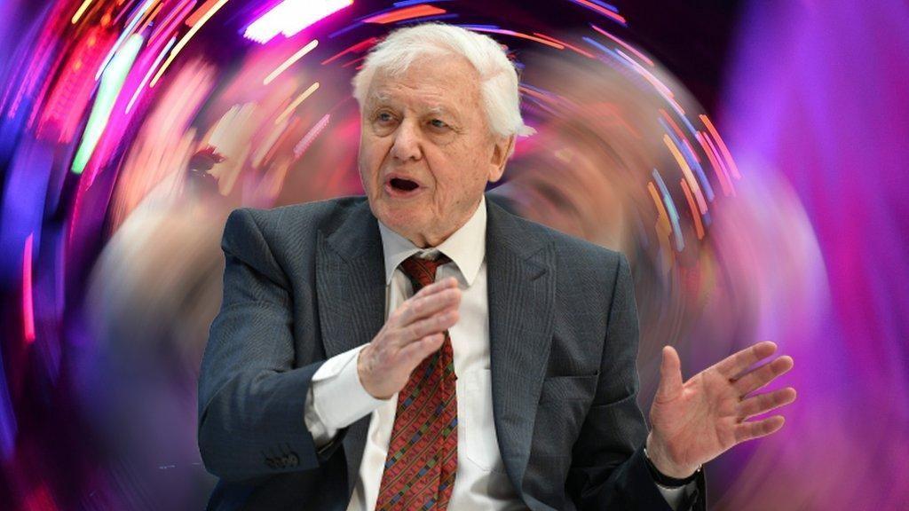 Sir David Attenborough Pecahkan Rekor Instagram