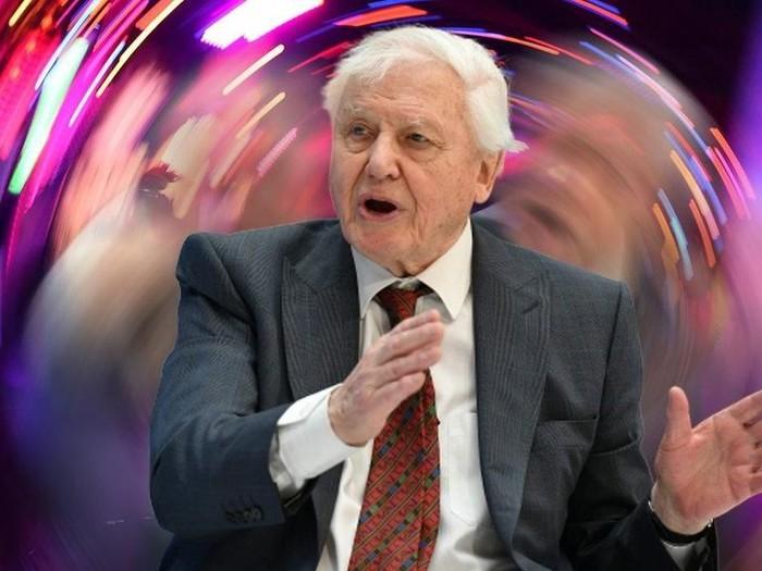Sir David Attenborough: Presenter senior BBC ingin gubah ulang musik gamelan Bali jadi musik dansa