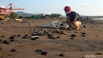 Pengelola PLTU Janji Bersihkan Batu Bara di Pantai Cipatuguran