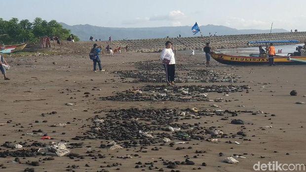 Aktivis Lingkungan Bersihkan Batu Bara Berserakan di Pantai Cipatuguran