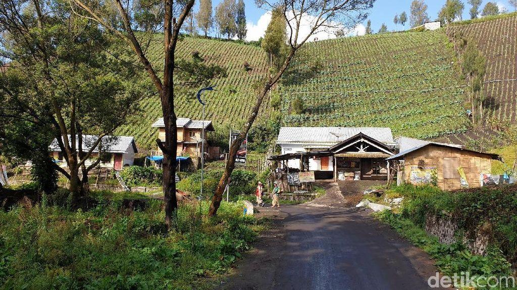 Mengunjungi Ranupani Gunung Semeru Sebelum Dibuka 12 Mei 2019
