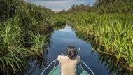 Taman Nasional Tanjung Puting Siap Jadi Destinasi Ekowisata Dunia