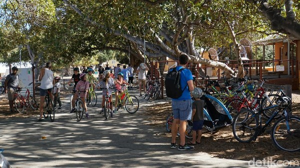 Hal yang bisa dilakukan di Rottnest Island adalah naik sepeda. Naik sepeda adalah kegiatan favorit di Rottnest Island (Masaul/detikcom)