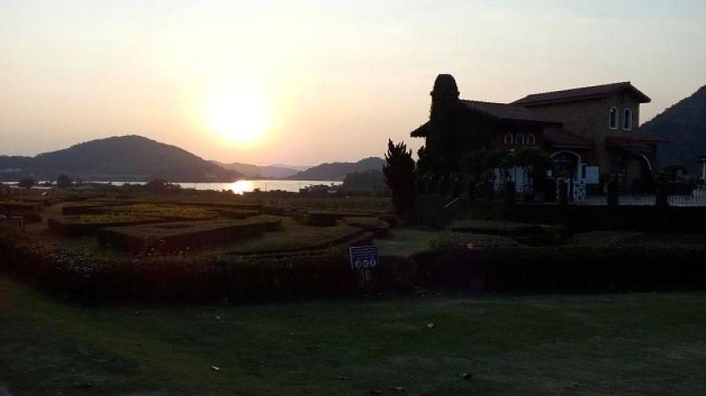 Tempat Terbaik Menikmati Sunset di Pattaya: Kebun Anggur