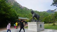 Selamat datang di Gunung Seorak (Afif Farhan/detikTravel)