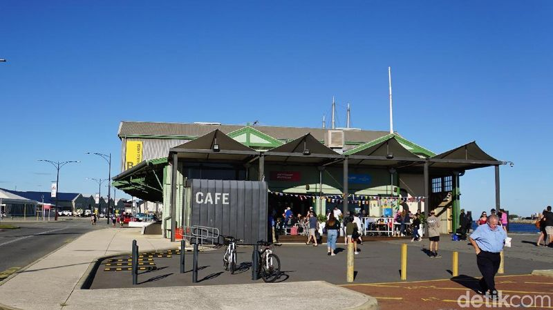 Tempat wisata unik di Australia Barat adalah Rottnest Island. Cara pergi ke sana dari dermaga feri B Shed di Fremantle (Masaul/detikcom)