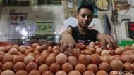 Kementan Pantau Ketat Stok Telur Ayam Selama Ramadhan