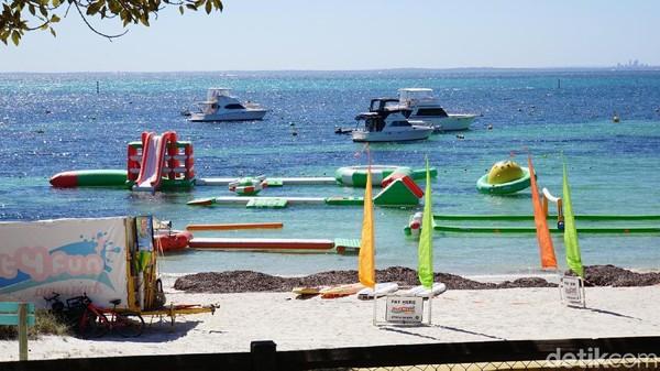 Rottnest Island adalah destinasi sempurna untuk penggemar olahraga air, termasuk berenang, menyelam, berselancar, memancing, dan bersnorkel (Masaul/detikcom)