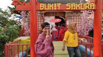 Bukan di Jepang, Ini di Lampung