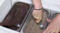 Perusahaan Ini Buat Es Krim Bukan Pakai Susu Tetapi Belatung