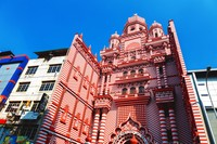 Masjid ini menjadi ikonik karena pilihan warna yang ada di seluruh bangunan. Kalau biasanya masjid punya satu warna yang jadi dasar, Masjid Jamiul Alfar justru punya 2 warna timpang tindih. (iStock)