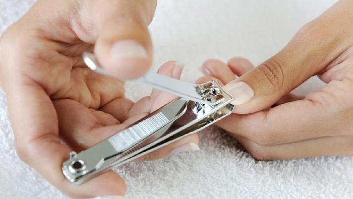 Gunting kuku termasuk salah satu barang pribadi yang pantang dipinjam-pinjamkan (Foto: iStock)