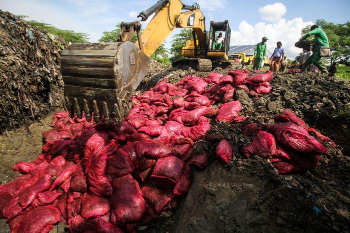 Sebanyak 5.620 karung bawang merah selundupan asal disita dari dua unit KM Rahmat Laot GT 25 bernomor 3105/PPF dan KM Samudra Al Mubarakah GT 45 bernomor 1385/PPF pada 14 April 2019 di perairan Jambo Aye pesisir timur Sumatera.