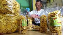 Petani Pisang Gagal Panen, Pengusaha Keripik Kelabakan Jelang Lebaran