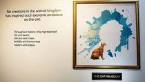 Foto: Museum Kucing Ala Singapura