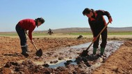 Pakar PBB Sebut Warga Korut Rentan Alami Kelaparan