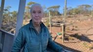 Ahli Primata Dunia Desak Australia Lebih Serius Atasi Perubahan Iklim