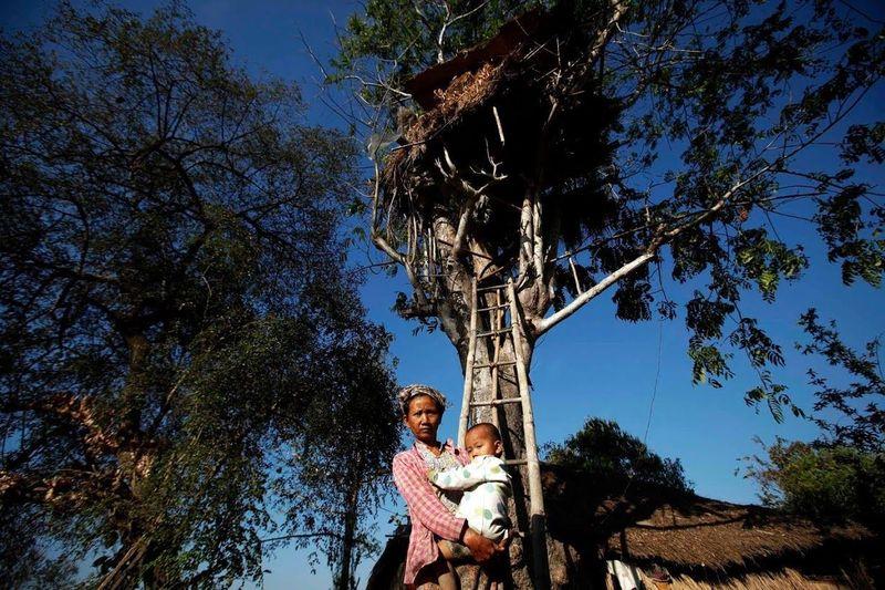 Than Shin menggendong cucunya di bawah rumah pohon keluarga di Desa Kyar Chaung, Myanmar. Itu untuk menghindari serangan gajah liar yang mematikan (Minzayar/Reuters)