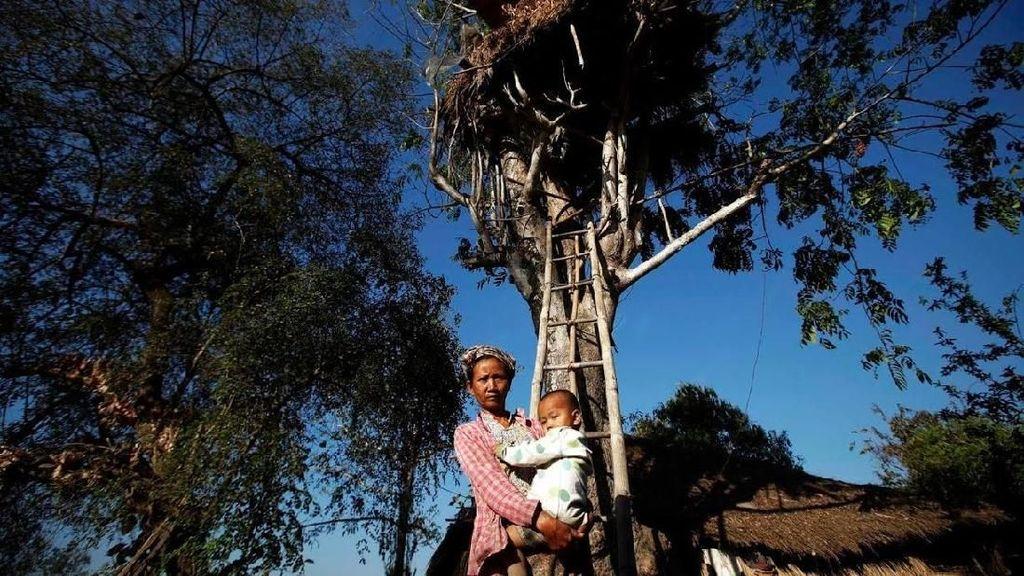 Potret Rumah Pohon Myanmar untuk Berlindung dari Gajah