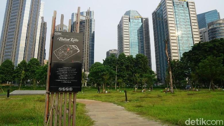 Hutan Kota GBK yang kini sedang direnovasi (Syanti Mustika/detikTravel)