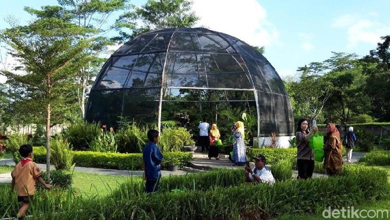 Kebun Raya Indrokilo di Boyolali (Ragil/detikcom)