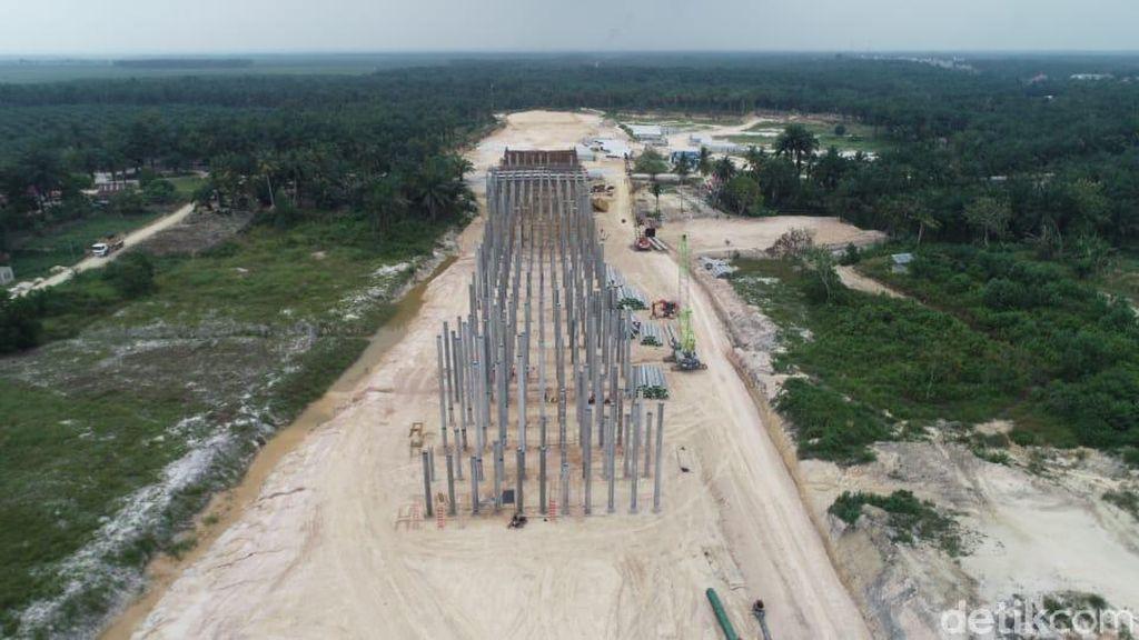 Underpass Khusus Gajah Disiapkan di Jalan Tol Pekanbaru-Dumai