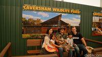 Caversham Wildlife Park (Masaul/detikcom)
