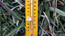 Beku! Suhu di Dieng Capai Minus 1 Derajat Celsius Hari Ini