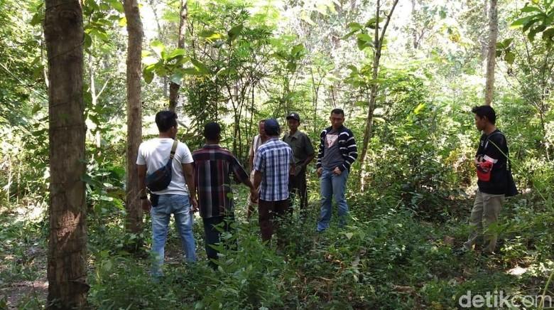 Mayat Pria Penuh Luka di Hutan Blora Diduga Korban Pembunuhan