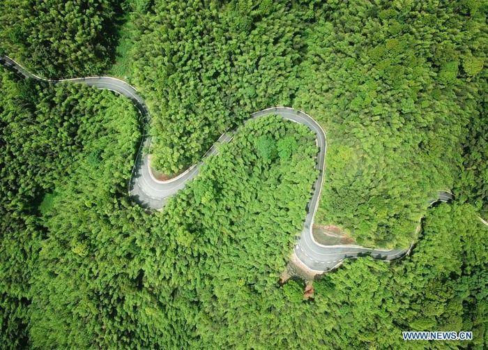 Ini adalah penampakan jalan di Taman Hutan Nasional Chishui Zhuhai di Kota Chishui, Provinsi Guizhou di China barat daya. Istimewa/Xinhuanet/Yang Wenbin.