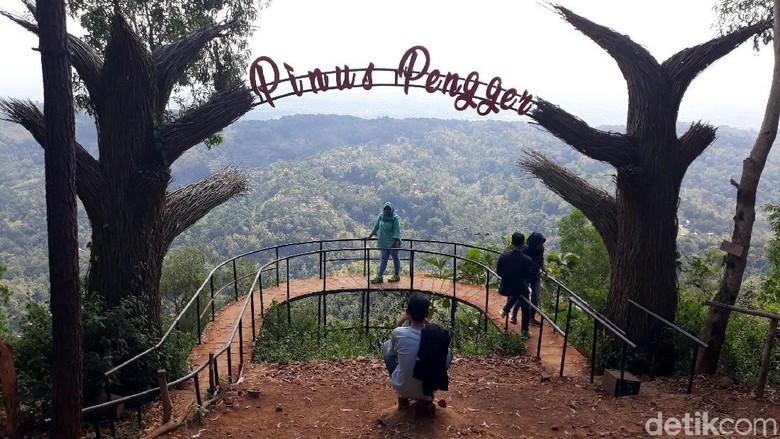 Pinus Pengger Bantul (Pradito Rida Pertana/detikcom)