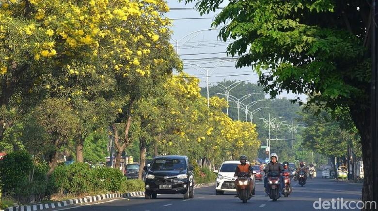 Kota Surabaya (Amir Baihaqi/detikcom)