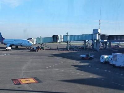 Imbas Tiket Pesawat Mahal, Jumlah Wisatawan Lokal Menurun