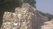 Melihat Pabrik Kertas yang Cemari Lingkungan Namun Tetap Produksi