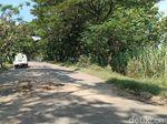 Dear Bupati Ngawi, Tolong Dong Perbaiki Jalan Ini