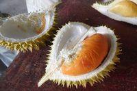Cicipi Musang King, D24 hingga Black Thorn di Festival Durian Terbesar Malaysia